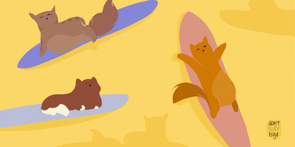 Summer Cats wallpaper